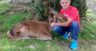 La storia di Aladino Montes e del cervo che lo ha convinto a smettere di cacciare gli animali