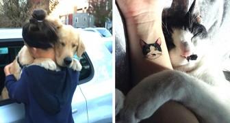 15 foto's die met meer dan duizend woorden tonen hoeveel genegenheid een huisdier ons kan geven