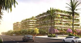 Drie gebouwen bedekt met duizenden planten en bomen: dit is het eerste verticale bos in Afrika