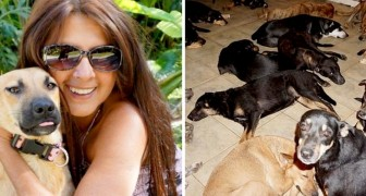 This woman gave refuge to 97 dogs in her home to save them from the fury of Hurricane Dorian!