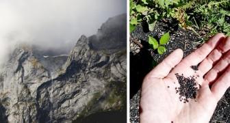 Studie bestätigt, dass es in den Rocky Mountains in den Vereinigten Staaten Kunststoff regnet
