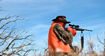 Riapre in anticipo la stagione della caccia: in Italia vengono uccisi fino a 139 animali al secondo