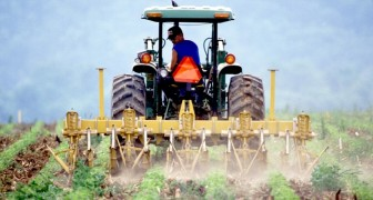 I cambiamenti climatici stanno minacciando il futuro dell'agricoltura nell'Europa del Sud