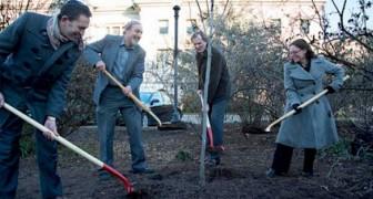 La Nuova Zelanda pianterà 1 miliardo di alberi per combattere il cambiamento climatico