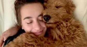 Het hebben van een hond in huis verbetert de kwaliteit van het leven: dat onthult een wetenschappelijk onderzoek