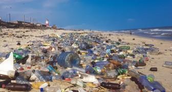 Die Verschmutzung ist in den Sedimenten der Ozeane zu finden: Wir sind in das plastische Zeitalter eingetreten