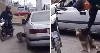 Lega il cane all'auto e lo trascina per punizione, ma i passanti intervengono e glielo strappano di mano