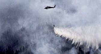 Nach den Bränden im Amazonas und in der Arktis warnt die Wissenschaft: Wir erleben die Ära des Pyrozäns
