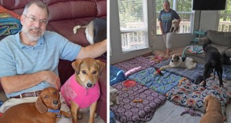 This man has created a shelter to accommodate older dogs who could not find a home