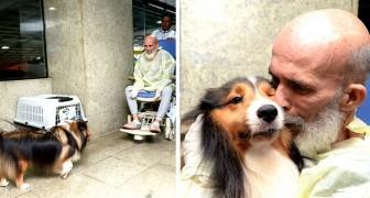 Questo cane visita il suo padrone malato di cancro in ospedale: i suoi miglioramenti sorprendono i medici