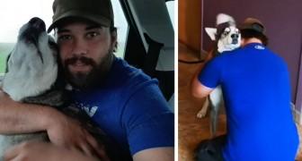 Questo ragazzo ritrova il cane smarrito dopo 4 anni: quando si riabbracciano non riesce a smettere di piangere