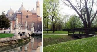 Bosco urbano a Padova: il Comune propone di piantare 20mila alberi entro il 2039