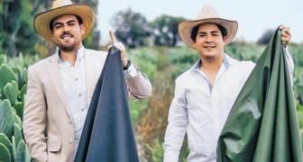 Questi due imprenditori creano un'eco-pelle sostenibile derivata dalle proprietà del cactus messicano