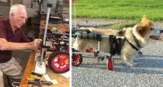 Un ex-veterinario di 90 anni realizza sedie a rotelle per animali disabili: Vederli correre è il mio stipendio