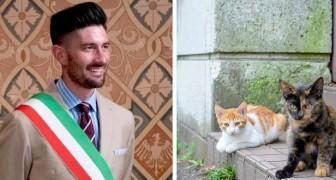 Questo sindaco romagnolo ha ospitato in casa propria 20 gatti randagi per prendersi cura di loro