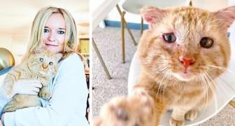No obstante la prohibición del patrón de casa, esta mujer ha logrado adoptar a un gatito salvado de la calle