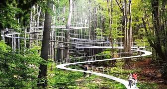 A Istanbul questo parco sospeso tra gli alberi permetterà a tutti di scoprire la natura da una nuova prospettiva