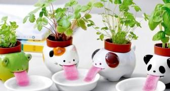 Queste simpatiche fioriere mantengono idratate le vostre piante senza doverle mai annaffiare