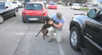A soldier returns home from his mission and his dog completely loses control !