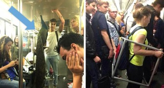 Stranezze su rotaia: 17 foto di situazioni stravaganti vissute in metropolitana