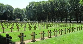 A Parigi nasce il 1° cimitero green: bare biodegradabili e lapidi in legno per non contribuire all'inquinamento