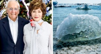 Questa coppia di miliardari ha donato 750 milioni di dollari per la ricerca sui cambiamenti climatici