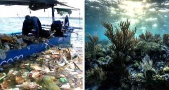 Questi 2 surfisti ripuliscono gli oceani dalla plastica: in poco tempo hanno raccolto 3 milioni di kg di rifiuti