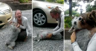 Hon kommer hem efter två år och hennes hund svimmar av glädje!