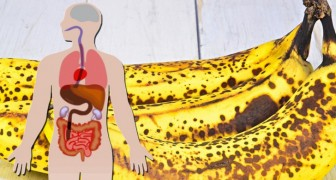 Perfectly ripe and slightly spotted bananas can prove to be a powerful ally for our well-being