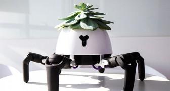 Questo vaso robot segue la luce del sole e si lamenta se le piante non vengono annaffiate
