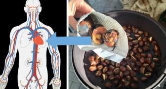 La castagna, il frutto autunnale ricco di vitamine e minerali essenziali per la salute del nostro organismo