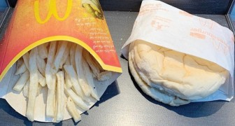 Questo è l'ultimo hamburger venduto da McDonald's in Islanda: dal 2009 è ancora del tutto integro