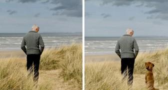 La campagna pubblicitaria di questa azienda mostra come cambia la vita prima e dopo l'arrivo di un cane
