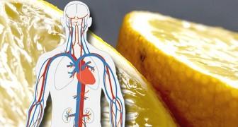 Infusión con cáscara de limón: un óptimo aliado para la salud de nuestro corazón