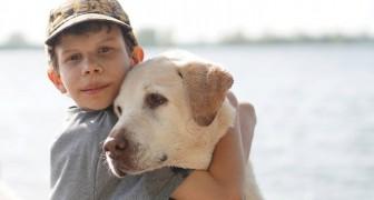 In una scuola spagnola è stata introdotta la protezione animale come materia scolastica