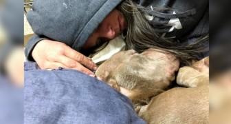 Questa donna ha trascorso la notte con il cane in fin di vita, confortandolo nei suoi ultimi momenti