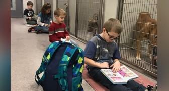 Les enfants lisent à voix haute aux chiens et aux chats du refuge pour créer un environnement calme et détendu