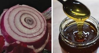 Sirop au miel et à l'oignon : un remède maison efficace contre la toux