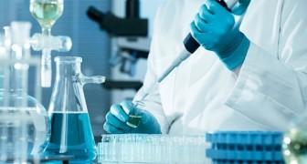 Alzheimer: Forscher entdecken das Molekül, das die ersten Symptome der Krankheit blockiert