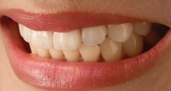 Une équipe de chercheurs a mis au point un moyen de faire repousser les dents en deux mois seulement