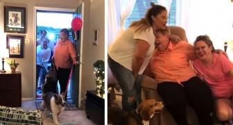 Vive por 2 anos no carro com os cachorros: toda a comunidade se move para comprar uma casa para eles