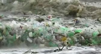 Une vague de bouteilles en plastique est arrivée en Afrique du Sud : la mer supplie d'être sauvée