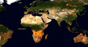 Une vidéo de l'ESA montre toutes les zones de la Terre dévastées par les incendies en 2019