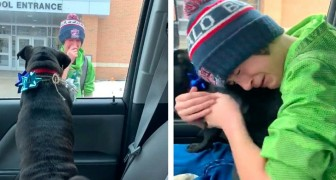 Mom surprises her son as he leaves school by bringing back his dog that had been lost two weeks earlier