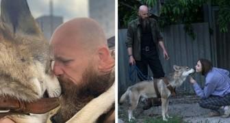 Cet homme a sauvé un petit loup et l'a élevé comme animal de compagnie