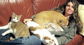 Même la science suggère qu'être une femme à chats peut être bénéfique pour la santé