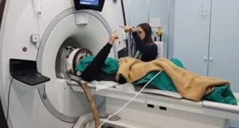 Innovatives Gerät reduziert Parkinson-Zittern auf sofortige, sichere und nicht-invasive Weise
