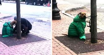 Sie verbieten ihr, ihren Hund in das Postamt zu bringen: eine Frau deckt ihn mit ihrer Jacke zu, um ihn vor der Kälte zu schützen