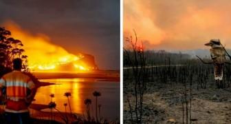 Questi scatti dall'Australia ci mettono di fronte a tutta la terribile devastazione causata dagli incendi