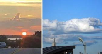 Ces images suggestives de nuages en forme de chiens montrent qu'eux aussi vont au ciel